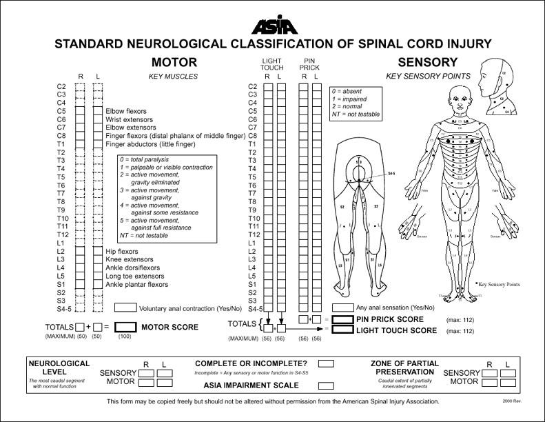 Wheeless 39 Textbook Of Orthopaedics